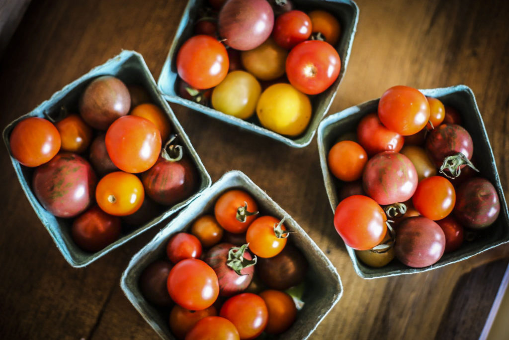 Tomatoes are one of Chef Megan's favourite ingredients to work with.
