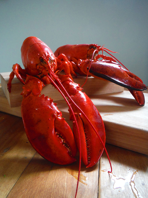 Red cooked lobster displayed on cutting board.